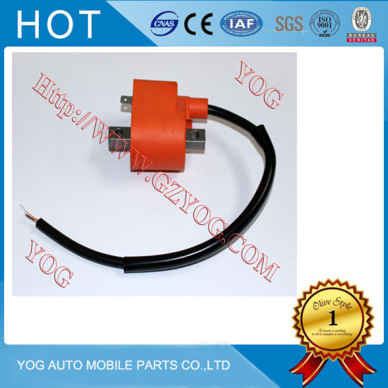 Motorcycle Ignition Coil for Bajaj/Tvs/Italika/Motomel 125cc pictures & photos