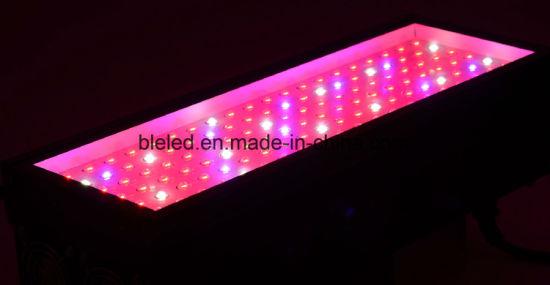 Delightful Best Quality LED Grow Lighting Hydroponics China 490W Ideas