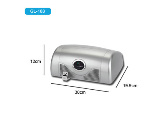 China Car Odor Remover Air Purifier Ozone Generator Vehicle