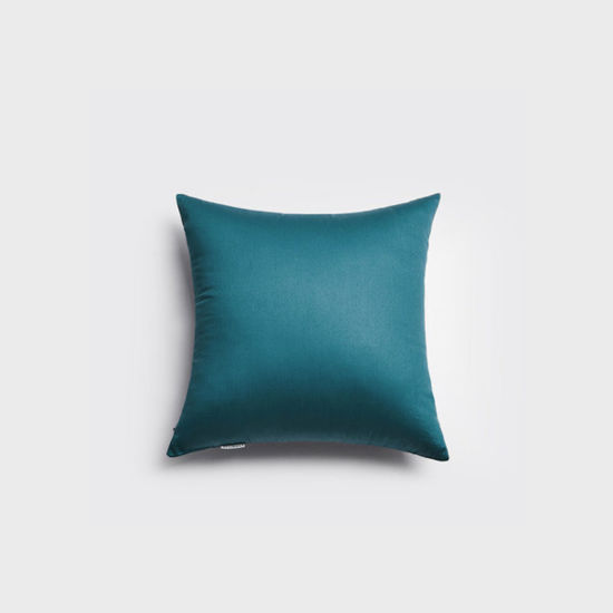 China Sofa Cushion Pillow Insert Down