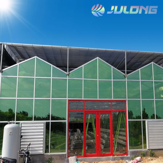 Professional Manufacturer Multi Span Venlo Glass Greenhouse with Hydroponic Growing System for Strawberry Tomato Lettuce Vegetable Flower Garden