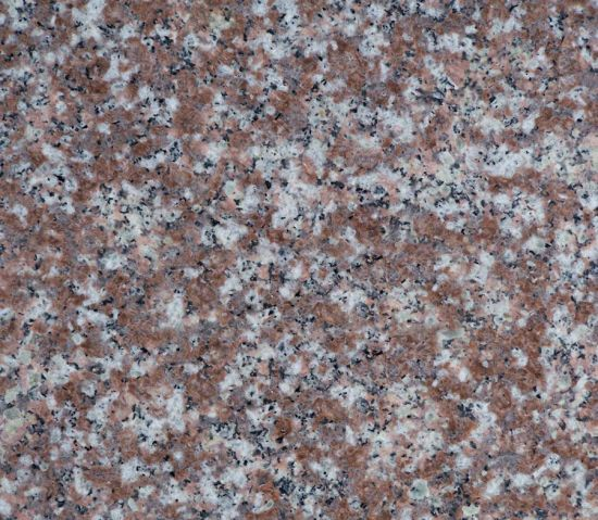 G687 Maple Red Granite Wallstone/Covering/Flooring/Countertop/Tiles/Slabs Granite pictures & photos
