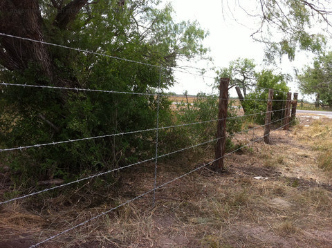 Farm field fence live stock fence animal fence/ animal enclosure fence