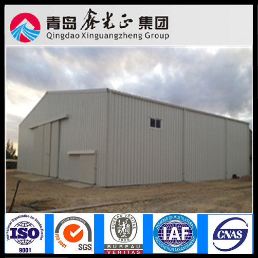 Professional China Steel Warehouse Builder (SSW-308)