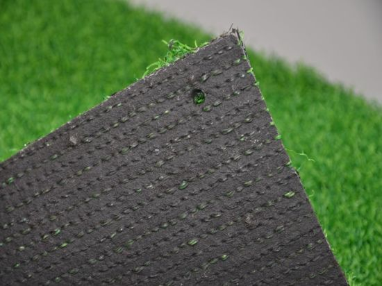 Synthetic Grass for Sport Golf Gfn pictures & photos