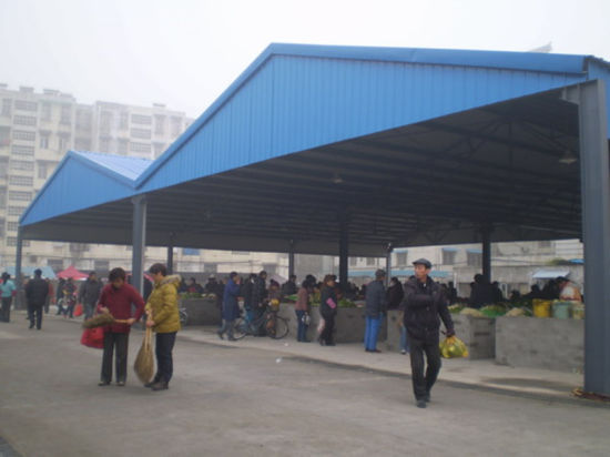 Structural Steel Building Products Trading Market Shed (SS-15246)