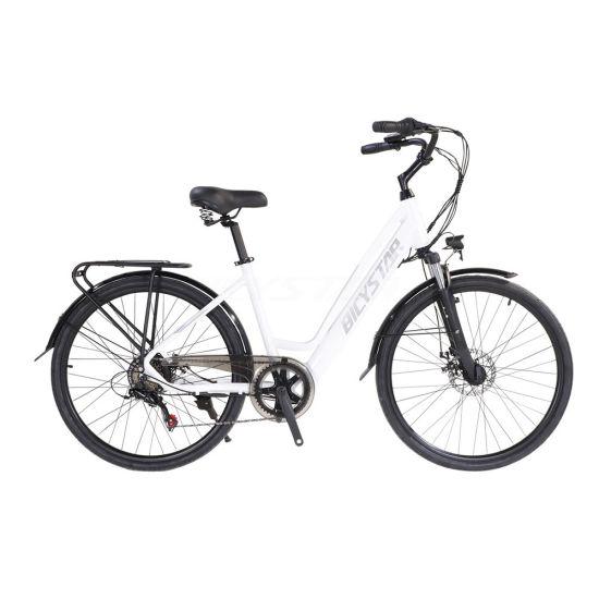 Fat E Powerful Bike MID Drive Emoutain Emoutain Electric MTB Carbon E Bike MTB Electric Bicycle