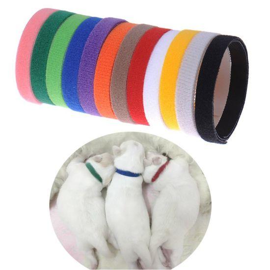 Adjustable Puppy ID Collars Kitten ID Collars