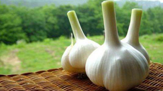 2019 Fresh Vegetable Fresh Normal White Garlic 5.5cm