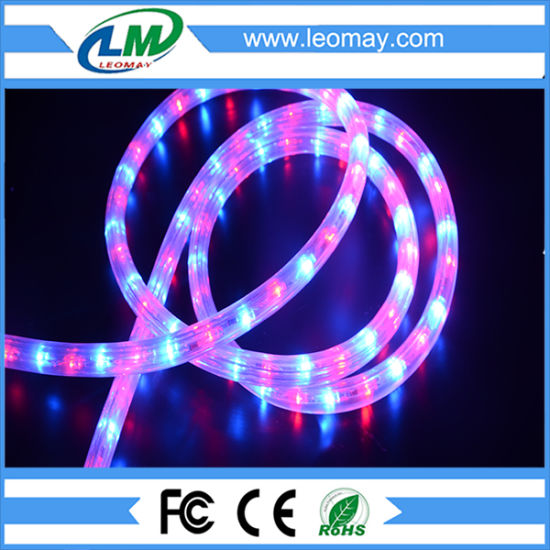 China ip65 waterproof 3 wires round horizontal led rope light ip65 waterproof 3 wires round horizontal led rope light mozeypictures Gallery
