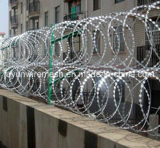 Galvanized Single Coiled Razor Barbed Wire pictures & photos