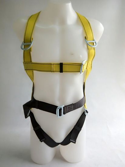 Construction Safety Harness with Rope Lanyard, D Ring Safety Harness pictures & photos