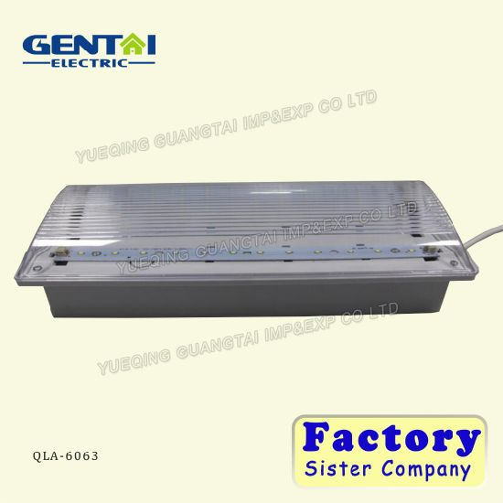 Rechargeable Battery Backup Maintained Fluorescent Tube Emergency Light pictures & photos