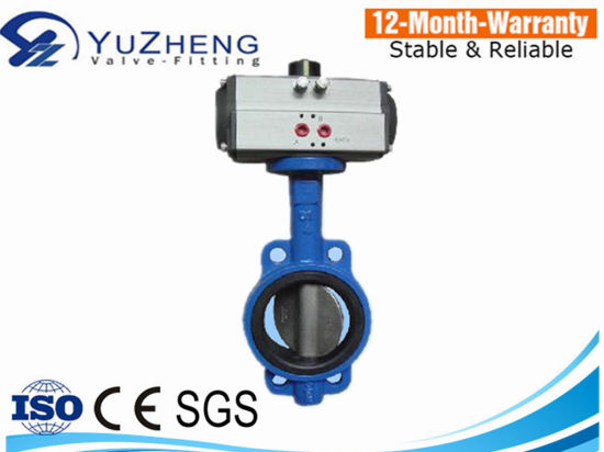 Butterfly Valve with Flange/Wafer Pneumatic Actuator