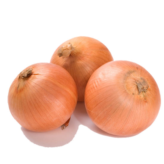 Factory Direct Supplier Yellow Onions pictures & photos