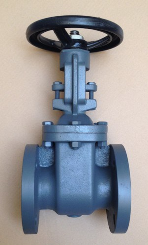 JIS 10K Rising Stem Gate Valve pictures & photos