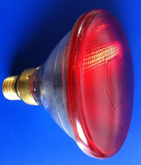 Red Clear Glass Long Life Infrared Heat Bulb