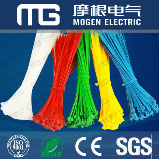 2017 Newly Ce RoHS Nylon Cable Ties