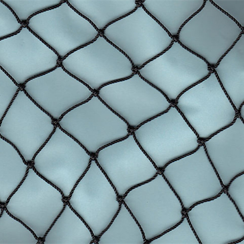 China Supply High Quality Bird Net Low Price pictures & photos