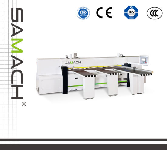 Ce Certification Woodworking Tool Beam Reciprocating Panel Saw Rwj3200b