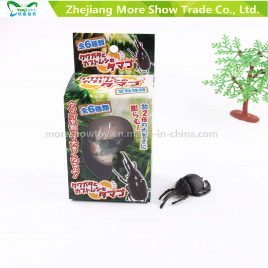 Factory Supply Children Water Dinosaur Eggs Animals Growing Toys pictures & photos
