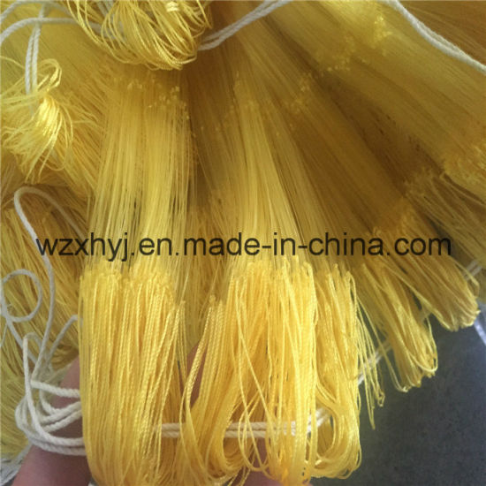 0.20mm*40mmsq*150md*150m Nylon Monofilament Fishing Net pictures & photos