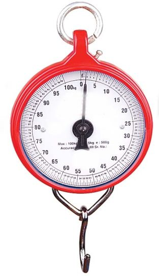 100kg Spring Hanging Scale with S Hook