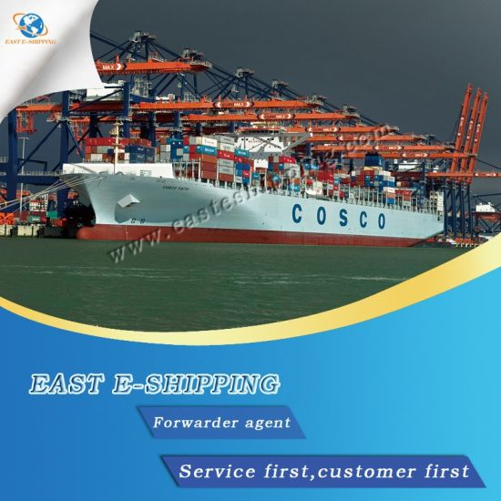 Reliable Forwarder Agent/Sea and Air Shipping From China to  India/Pakistan/Sri Lanka