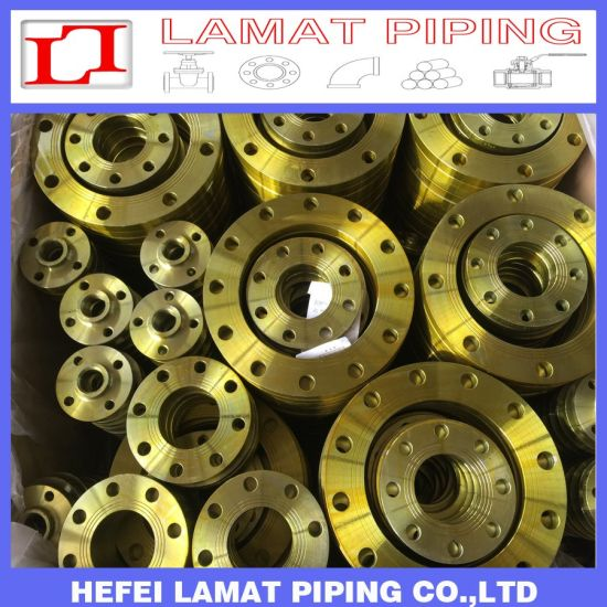 Carbon/Mild Steel Stainless Steel Casting/Forged Flange