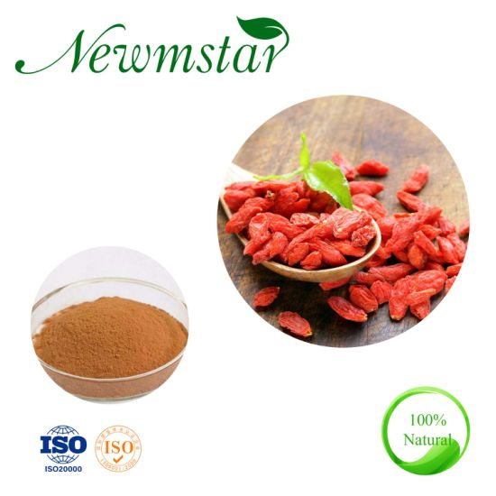 Factory Supply Goji/Wolfberry Extract Powder 10: 1 with Competitive Price