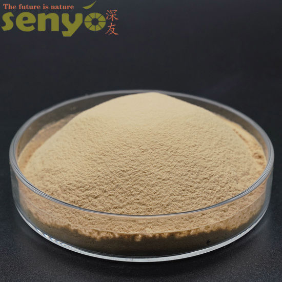 Natural Healthy Absorbable Chromium Enriched Yeast