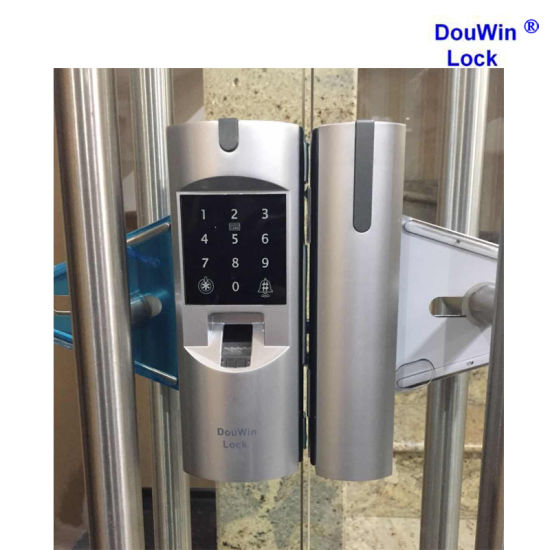 China Douwin Brand Commercial Glass Door Lock China Glass Door