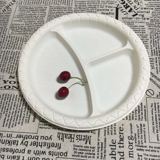Biodegradable 10\u2032\u2032 Three Compartment Dinner Tableware Paper Plate  sc 1 st  Hefei Moch Imported and Exported Co. Ltd. & China Biodegradable 10\u2032\u2032 Three Compartment Dinner Tableware Paper ...