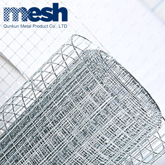 China 1X1 Stainless Steel Welded Wire Mesh - China Welded Wire Mesh ...