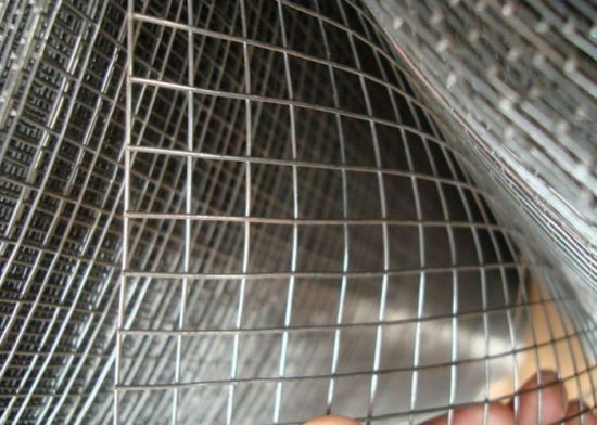 """12gauge Wire Thikness*1/4""""*4"""" stainless Steel Welded Wire Mesh"""