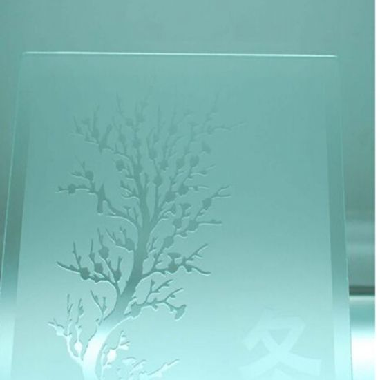 3-19mm Acid Tempered Etched Glass for The Door and Window pictures & photos