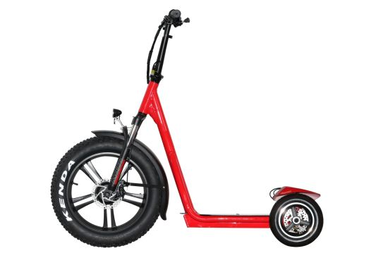 250W Electric Scooter Wholesale Online
