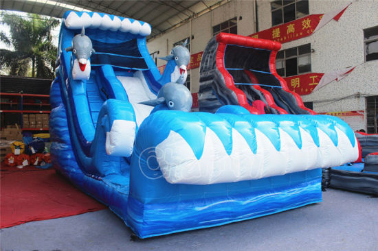 2017 Fun Dolphin Inflatable Water Slide for Children Party pictures & photos