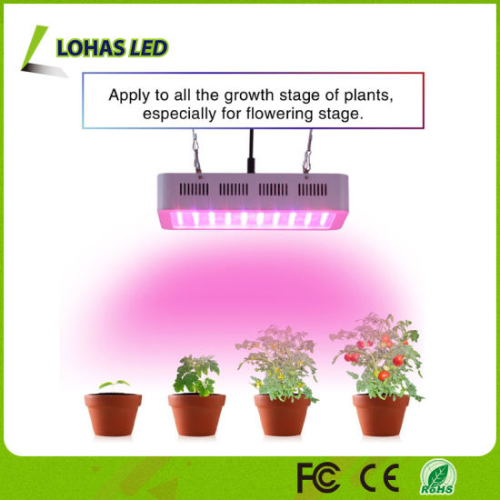 LED Plant Grow Light 300W 600W 900W 1000W 1200W 1500W 1800W 2000W Panel  Full Spectrum LED Grow Light for Greenhouse Bloom and Vegetable