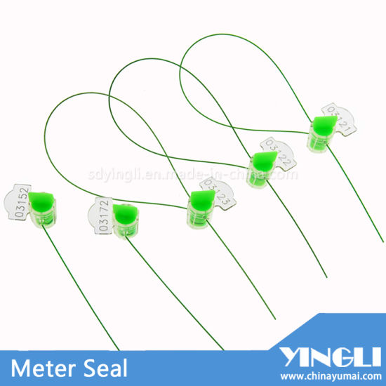 Meter Seal with Laser Printing Yl-S250d pictures & photos