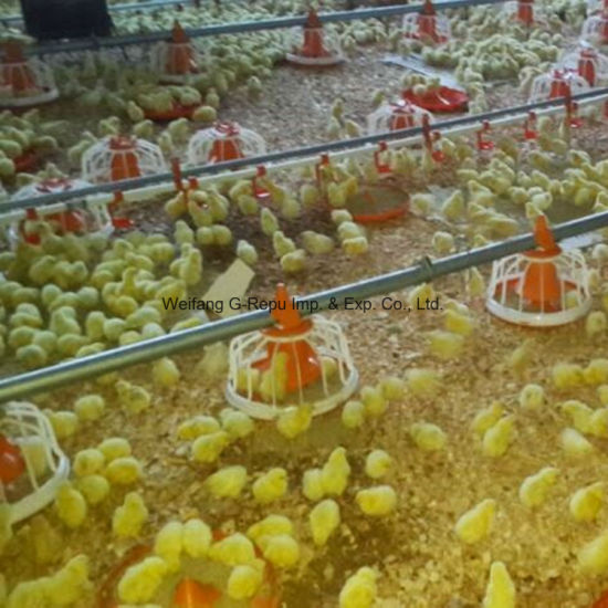 Poultry House Equipment for Broiler, Breeder, Layer Chicken