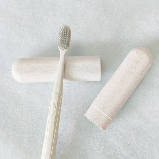Travel Portable Couple Toothbrush Set Soft Bristle Adult Household Creative Wheat Straw Toothbrush Tube Pack