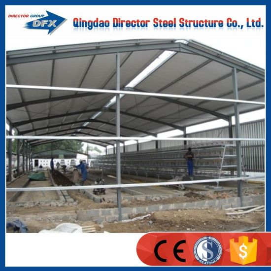 Poultry Farm Construction : China morden design fast construction steel building pig