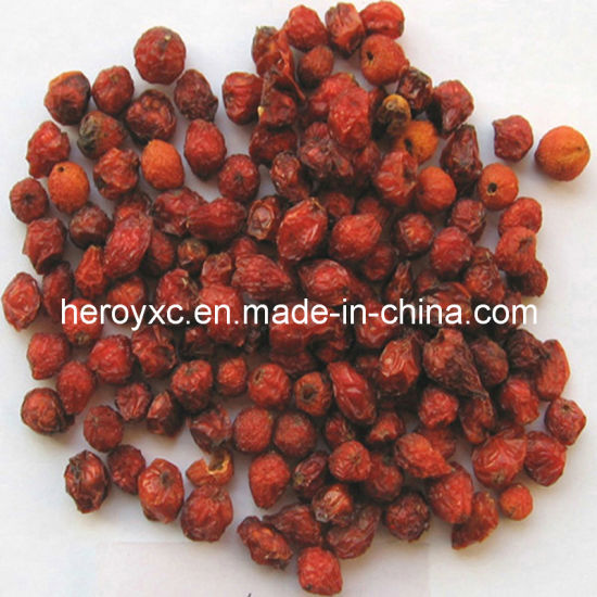 Dried Wild Rosehip Fruits Whole pictures & photos