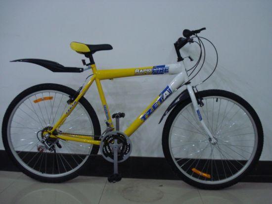 Cheap Non-Suspension Mountain Bicycle (MTB-048)