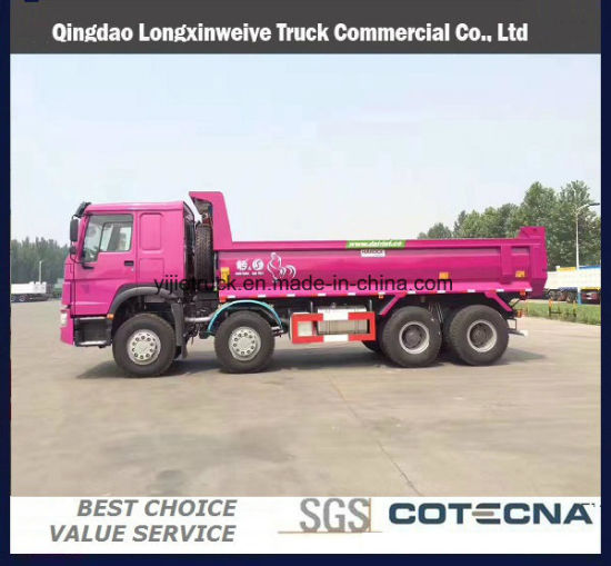Cargo Dump 4WD Diesel New Truck for Sale From China pictures & photos