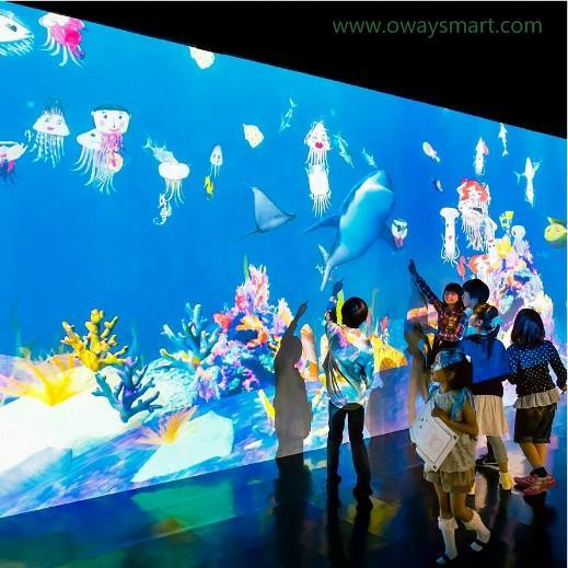 Indoor Interactive Wall Playground Interactive Projection Throw Ball Games for Children Playing, Sports Interaction, Events and Party Floor Games
