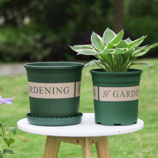 Flower Pots For Decoration Nusery
