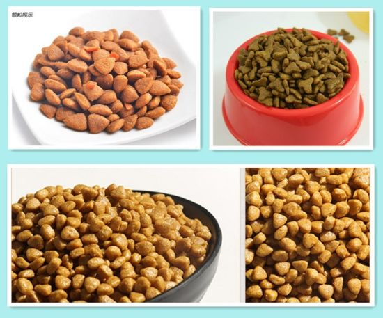 Dried Cat Food Wholesale Pet Food