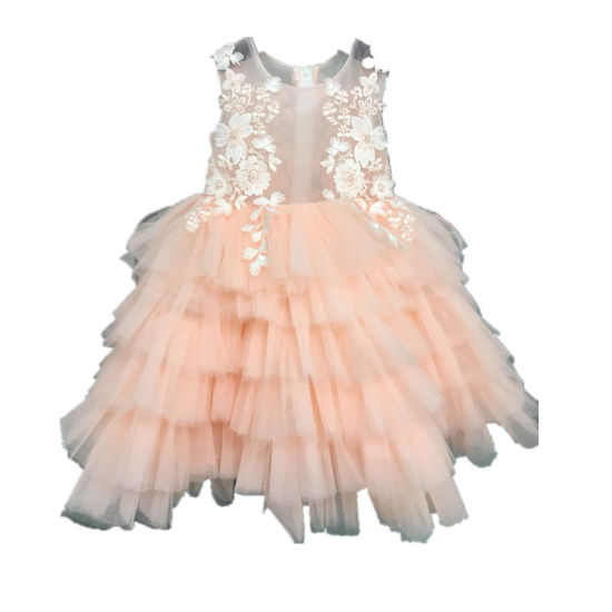 Pink Lace Tulle Little Girl Party Evening Dress Clothes Rsl010